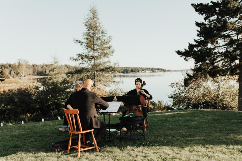A wedding string quartet provides wedding ceremony music.